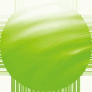 温泉藻類RG92